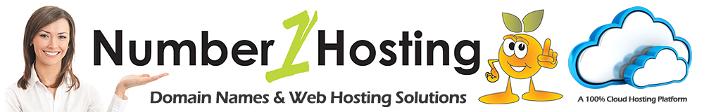 Number One Hosting Company
